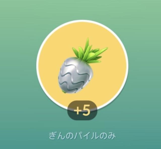 【アイテム】銀のパイル.jpg